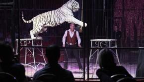 Cirque Medrano à Lyon. afp