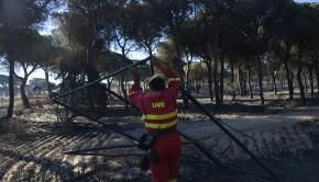 SPAIN-FIRE-MAZAGON-DONANA